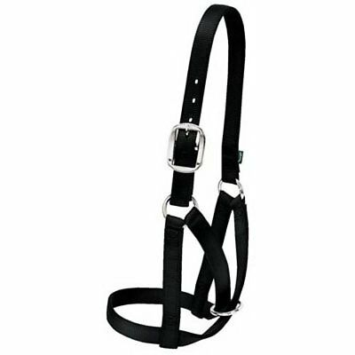 Weaver Leather Barn Cow Halter, Black, Small