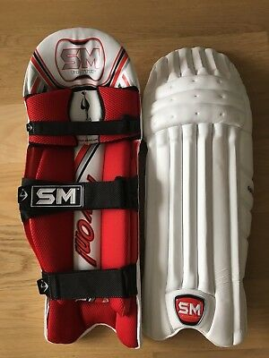 Mens SM Pro Players Test Level Sultan batting cricket pads