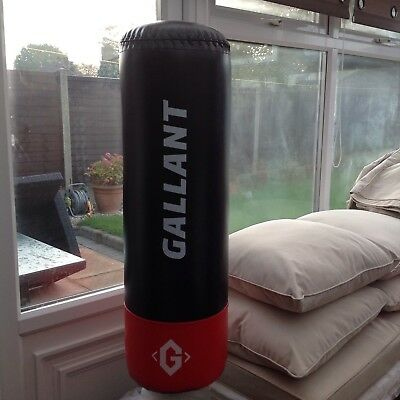punching bag - Free Standing