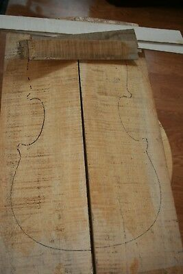 luthier special - Old Bosnian Maple -Violin/viola flamed maple+Set of ribs