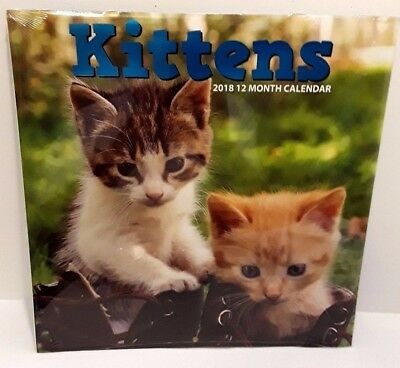 2018 Wall Calendar - Kittens 12 Month 12x24 Inches Brand New