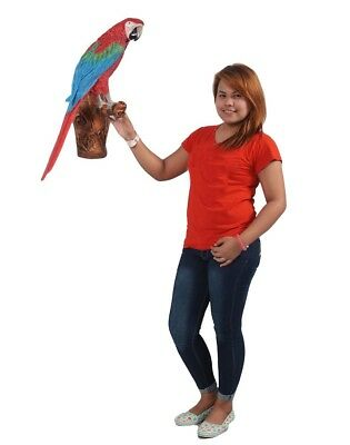 Bird Statue - Life Size Parrot Sculpture - Red and Blue Macaw Parrot on Branch