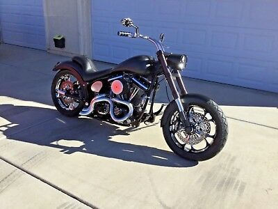 1996 Harley-Davidson Softail  Harley Softail/FatBoy 96 Completely Customized $$ With Clean Docs.