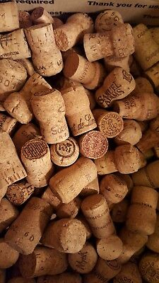 250 Used Champagne Corks, all-natural, great for crafts! Free shipping!