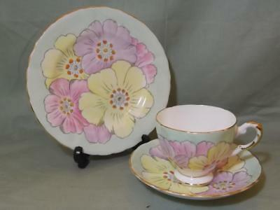Vintage Plant Tuscan Bone China Tea Trio Stunning Floral Pattern No.7424