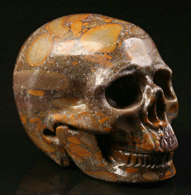 """2.2""""Bamboo Stone Carved Crystal Skull, Realistic, Crystal Healing"""