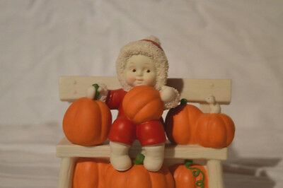 "Department 56 Snowbabies ""PICK OF THE PATCH"" NIB Fall Figurine RARE 2002"