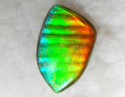 Ammolite Gemstone Natural Freeform Double-Sided Imperial- 23 x 15 mm  IMP-55