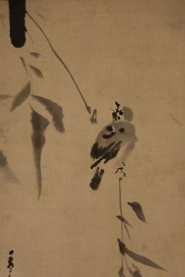 """JAPANESE HANGING SCROLL ART Painting """"Sparrow"""" Asian antique  #E8021"""