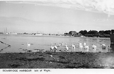 OLD POSTCARD 1950's - BEMBRIDGE HARBOUR SWANS - ISLE OF WIGHT