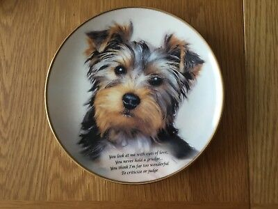 "Danbury Mint Plate ""Eyes of Love"" Poetry of the Yorkshire Terrier"