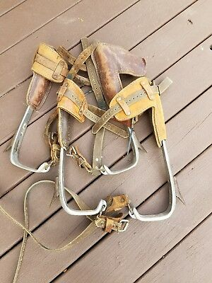 2 Pairs Bashlin Telephone Lineman Tree Climbing Hunting Spikes Spurs