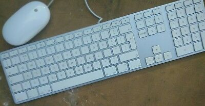 Apple iMac keyboard and mouse