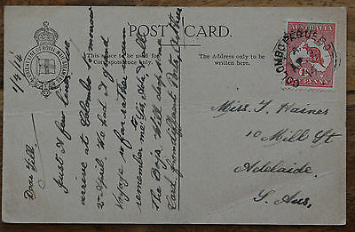 1914 Postcard 1D roo cancelled Colombo paqubot. Orient Line