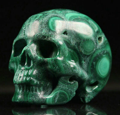 """1.2""""Malachite Carved Crystal Skull, Realistic, Crystal Healing"""