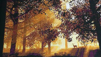 Deer At Dawn Completed Cross Stitch Picture