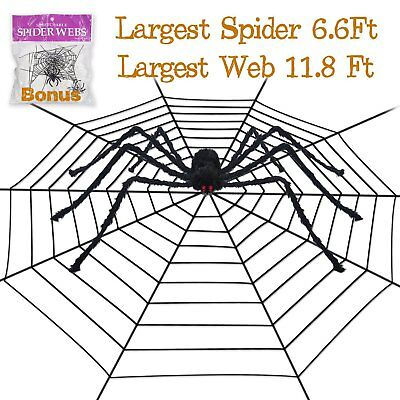 Pawliss Halloween 11.8 Feet Round Spider Web with 6.6 Ft Spider Scary Giant
