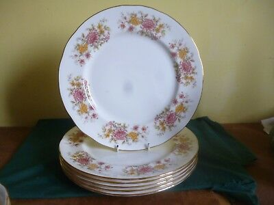 "6 Colclough Amanda 10.5"" Dinner Plates"