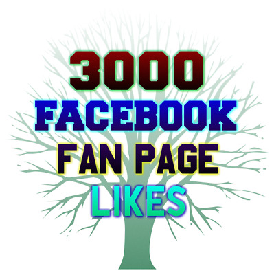 3000 Facebook Fan-Page-Likes-High-Quality-Fast