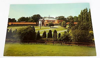 Postcard: Newmarket Racecourse - Tattersall's - Horse Racing - Suffolk