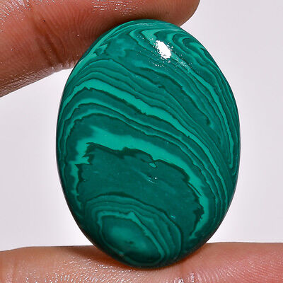 Malachite Oval Cabochon Loose Gemstone  40.35 Ct. Ks-165
