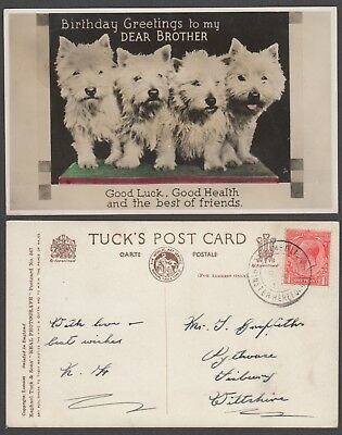 "Tuck & Sons. ""real photograph"" No 567  Birthday greetings."