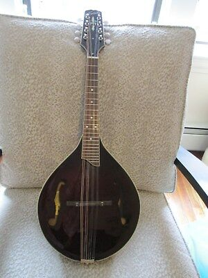 Used Unknown Older Model Kentucky A-style Mandolin with case