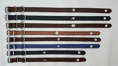Lot of 10-Pieces Different Color & Size Dog Collars with Sliver Symbol .