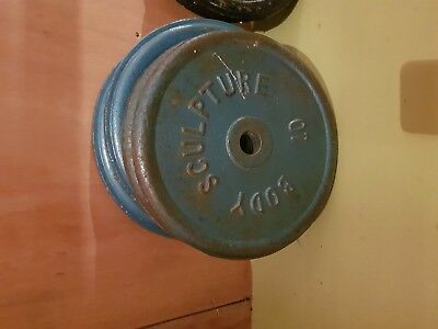 """Body Sculpture Cast Iron Weight Plates Discs 1"""" Dumbbell Lifting Barbell Bars"""