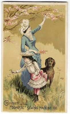 DOMESTIC SEWING MACHINE Trade Card 1880's Mother Daughter Dog in Spring