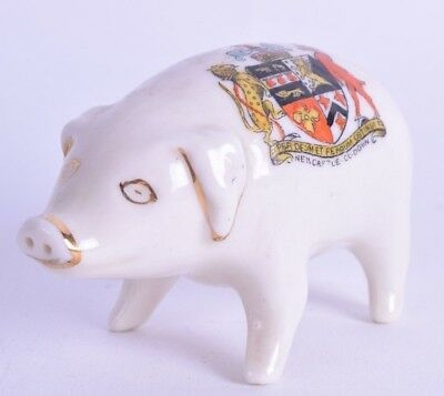 crested ware porcelain figurine pig - figure - newcastle co down - goss arcadia