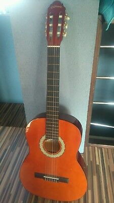 C.giant acustic guitar with case
