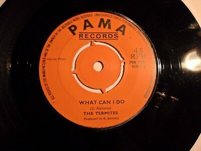 The Termites Show me the Way  / What Can I do  PAMA EXC