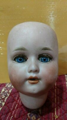 1909 Schoenau & Hoffmeister bisque doll head