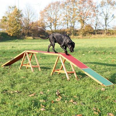 Pet Dog Play Agility Bridge MOVEMENT Balance Obedience TRAINING Outdoor Exercise