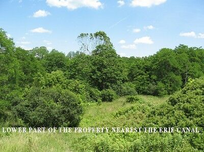 10 Acres! Wooded Land! Up-State NY LAND! All Utilities are available!