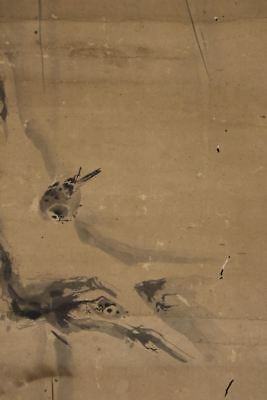 """JAPANESE HANGING SCROLL ART Painting """"Sparrow"""" Kano School Asian antique  #E8136"""