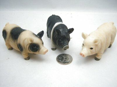 Set of 3 Young's Pig Figurines Heavy Resin Hampshire Yorkshire and Spotted Breed