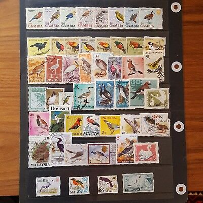 50 colourful bird stamps. Good condition.