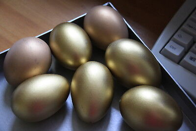 Hand Blown Duck Eggs x 6 Sprayed Gold Ready for Decorating