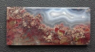 Agate paysage 35.9 carats - Natural moss agate Indonesia