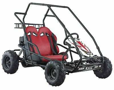 New Hisun Fun Cart PQV-200GK 196cc Two Wheel Drive with roll over protection