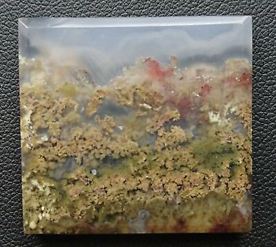 Agate paysage 82.4 carats - Natural moss agate Indonesia
