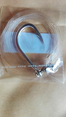 Terminale Drifting Tonno Spada 0.719 Fluorocarbon Asso Big Catch Youvella 6/0