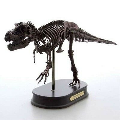 Tyrannosaurus Rex Favorite Dinosaur Figure Fossil skeleton FROM JAPAN