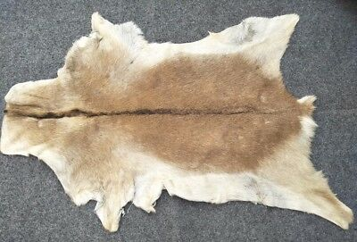 Goathide Western taxidermy Rug Cow Natural Pattern Fur Goat Skin MB-3309