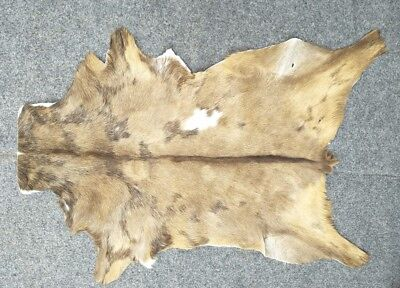 Goathide Western taxidermy Rug Cow Natural Pattern Fur Goat Skin MB-3312