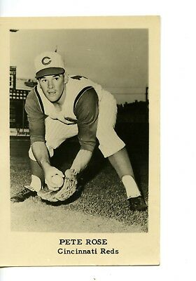 Circa 1963 Rookie Era Pete Rose Photo Cincinnati Reds Team Issue 3.5x5.5""
