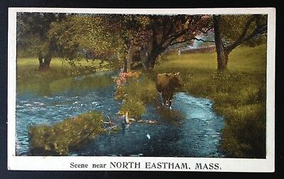 North Eastham, Mass. C.1924 Pc. View Of Scene Near North Eastham