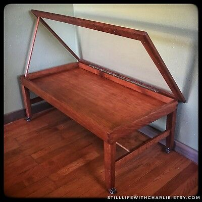 Handmade Oak Modern-Style Shadow Box Coffee Table for Collectibles